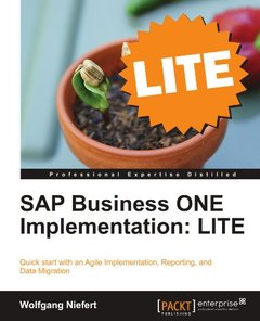 SAP Business ONE Implementation: LITE-cover