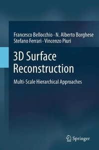 3D Surface Reconstruction: Multi-Scale Hierarchical Approaches (Hardcover)-cover