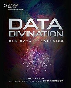 Data Divination: Big Data Strategies (Paperback)-cover