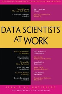 Data Scientists at Work (Paperback)-cover
