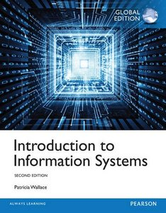 Introduction to Information System, 2/e (IE-Paperback)