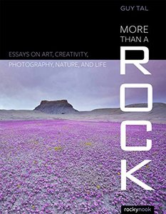More Than a Rock: Essays on Art, Creativity, Photography, Nature, and Life(Paperback)-cover