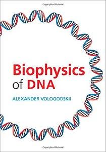 Biophysics of DNA-cover