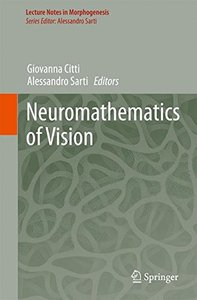 Neuromathematics of Vision (Lecture Notes in Morphogenesis)-cover