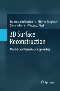3D Surface Reconstruction: Multi-Scale Hierarchical Approaches-cover