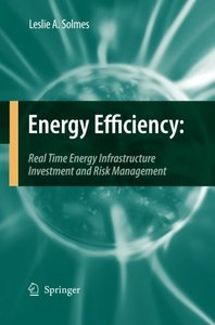 Energy Efficiency: Real Time Energy Infrastructure Investment and Risk Management
