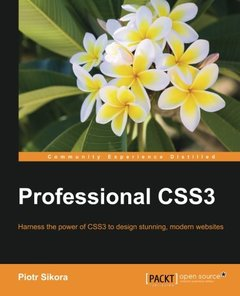 Professional CSS3-cover