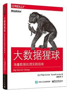 大數據猩球:海量數據處理實踐指南-cover