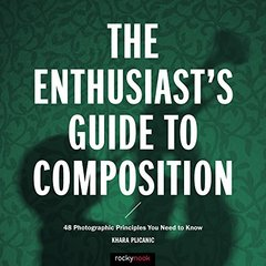 The Enthusiast's Guide to Composition: 48 Photographic Principles You Need to Know-cover