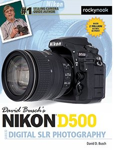 David Busch's Nikon D500 Guide to Digital SLR Photography-cover