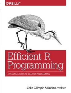 Efficient R Programming: A Practical Guide to Smarter Programming -cover