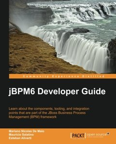 jBPM 6 Developer Guide-cover