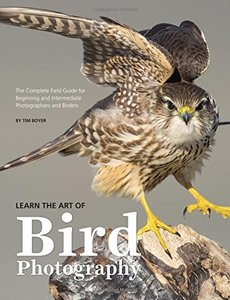 Learn the Art of Bird Photography: The Complete Field Guide for Beginning and Intermediate Photographers and Birders-cover