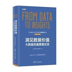 洞見數據價值:大數據挖掘要案紀實-cover