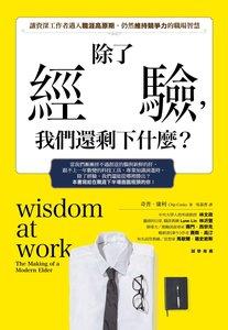 除了經驗,我們還剩下什麼?:讓資深工作者邁入職涯高原期時,仍然維持競爭力的職場智慧-cover