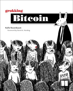 Grokking Bitcoin-cover