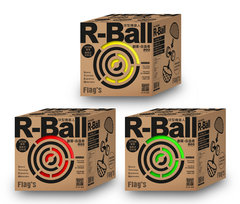 FLAG'S 創客‧自造者工作坊 -- R-Ball 球型機器人-cover