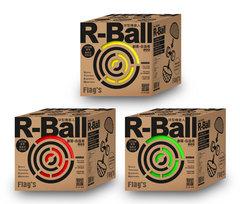 FLAG'S 創客‧自造者工作坊 -- R-Ball 球型機器人