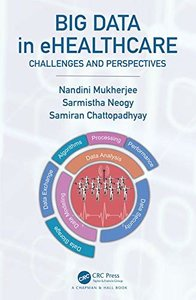 Big Data in eHealth: Challenges and Perspectives-cover