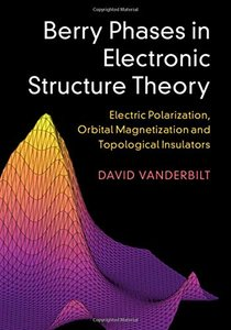 Berry Phases in Electronic Structure Theory: Electric Polarization, Orbital Magnetization and Topological Insulators (Hardcover)-cover