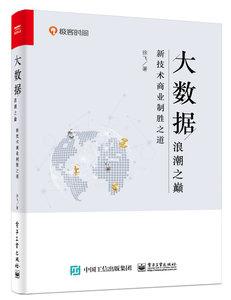 大數據浪潮之巔:新技術商業制勝之道-cover
