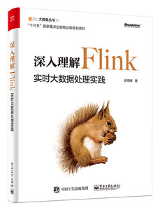 深入理解 Flink:實時大數據處理實踐-cover