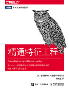 精通特徵工程 (Feature Engineering for Machine Learning: Principles and Techniques for Data Scientists)-cover