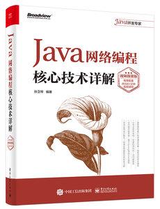 Java網絡編程核心技術詳解(視頻微課版)-cover