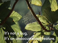 手工壁畫 Painting / It's not a bug, it's an undocumented feature / C 款 / 小-cover
