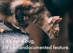 手工壁畫 Painting / It's not a bug, it's an undocumented feature / A 款 / 中-cover
