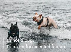 手工壁畫 Painting / It's not a bug, it's an undocumented feature / B 款 / 中