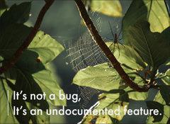 手工壁畫 Painting / It's not a bug, it's an undocumented feature / C款 / 中-cover