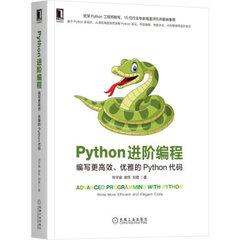 Python 進階編程:編寫更高效、優雅的 Python 代碼-cover