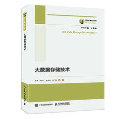 國之重器出版工程 大數據存儲技術-cover